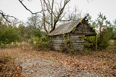 Farm shed in Anderson Co, S.C. (DT's Photo Site - Anderson S.C.) Tags: country roads recreation andersonsc canon 6d 24105mml lens barns farm sheds autumn colors foliage rural vintage rustic vanishing south southern landscape