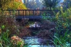 bridge over trouble waters..... (mmbottrop) Tags: pentax hdr k30 herbst see spiegelung bunt blätter wittringen denkmal autumn bunte laub lake reflection outdoor heiter brücke bridge steg übergang web