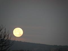 un point, c'est tout (sabine-43) Tags: lune