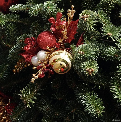 """Holiday Motif • <a style=""""font-size:0.8em;"""" href=""""http://www.flickr.com/photos/52364684@N03/31671589291/"""" target=""""_blank"""">View on Flickr</a>"""