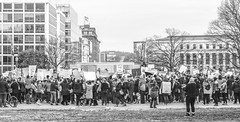 2017.01.29 Oppose Betsy DeVos Protest, Washington, DC USA 00257