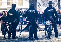 2017.02.04 No Muslim Ban 2, Washington, DC USA 00395