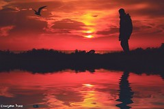 """""""If you can't fly (gusdiaz) Tags: sunset sunrise silhouette reflection sun clouds sky photoshop photomanipulation digital art arte atardecer amanecer reflejo agua water ocean sea vacation walking relaxing"""