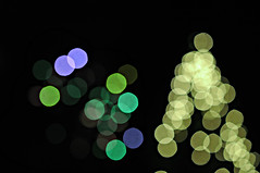of christmas trees and fireworks (brescia, italy) (bloodybee) Tags: 365project christmas christmastree tree tannenbaum fireworks newyear 2017 celebration bokeh light