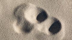 Blurred trace in the sand 2 (Walter Johannesen) Tags: thyborøn jylland jutland denmark danmark sand spor skygger strand track shadows beach