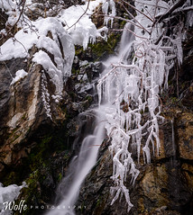 Icicles (Aaron_Smith_Wolfe_Photography) Tags: icicles winter snow white kingscanyon sierranevada