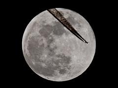 Moon 12.03.2017 (Michal Jeska) Tags: airbus a321231 british airways gmedn ba155 london cairo moon lunar luna mond ksiezyc mto11ca mc mto 11ca 1000 1000a mto1000 mirror lens maksutov maksutow teleskop telescope m42 mf manual focus russian soviet 1000mm f10 100 10 russentonne fujifilm fuji xpro1 xseries x pro1 rnav contrail spotting