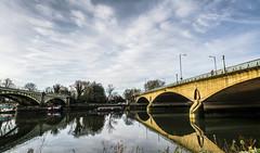 Twickenham Bridge (johngregory250666) Tags: river thames richmond bridge surrey blue reflections sky clouds trees 2017 january outdoor london uk england nikon d5200 nikkor tree green winter landscape path urban imagesofendlland