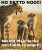 https://www.facebook.com/MossoTiziana/ #Tiziana #Mosso #Tizi #Twister #Titty #lovecat #cat #love #link #page #facebook #aforisma #citazione #frase #buongiornoatutti #ghepardi #paura #divertente #cuccioli (tizianamosso) Tags: citazione tiziana link paura ghepardi divertente lovecat titty facebook twister cuccioli tizi mosso love buongiornoatutti frase page aforisma cat