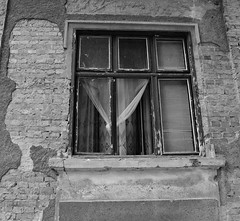The window in time