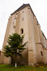 Exterior (Raoul Pop) Tags: architecture buttresses church corner evergreen exterior fortifiedchurch grand historic medieval tree trees bazna transilvania romania ro spring structure size romanesque saxon fortifications carpentry