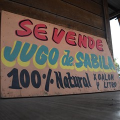 Aloe Vera juice for sale! These places pop up every once in a while, mango, orange, Aloe Vera farms selling fresh juice. Mango is the best. #TheWorldWalk #mexico #travel #twwphotos