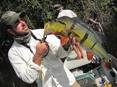 Amazonia 2012 (63)
