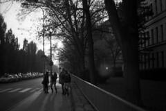 Praktica BX20 - Zemdlsk Street (Kojotisko) Tags: bw streetphotography brno creativecommons czechrepublic streetphoto prakticabx20 prakticar118f50mm
