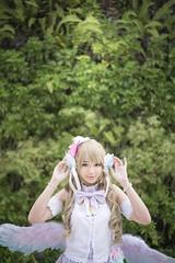 DSC03258 (cheosakulkulachet) Tags: white love day live kotori