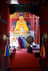Hemis Monastery (shazell212) Tags: india monk ladakh hemismonastery rituals buddhistmonk jammuandkashmir tibetanmonk redrobe lordbuddha