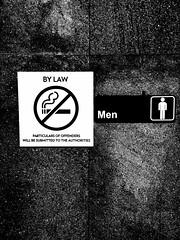 Anglų lietuvių žodynas. Žodis by-law reiškia n 1) vietinės valdžios potvarkis; 2) statutas lietuviškai.