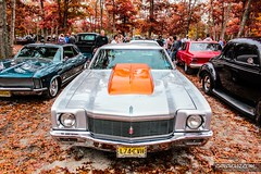Pumpkin Run 00113