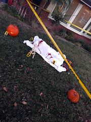 Lawn corpse 2, home, Halloween, Burbank, California, USA (gruntzooki) Tags: california ca usa halloween cali losangeles cal corpse ween crimescene