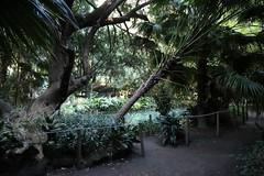 Reggia Parco_70