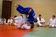 VfL Wolfsburg Judo-3.jpg