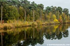 Reflectie (Bart Weerdenburg) Tags: autumn reflection fall herfst reflectie spiegeling