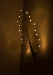 Light up Genesis