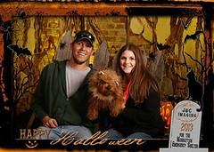 hudson-the-lion--how-cute-is-he--i-mean-ferocious--_10629517276_o