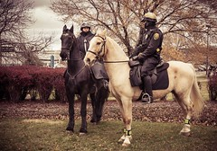 Mounted Crowd Control (otterman51) Tags: cleveland rockandrollhalloffame usa mounted police horses crowd control