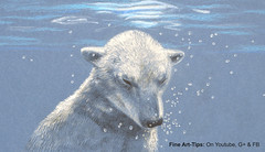 How to Draw a Polar Bear Under Water, With Color Pencils - Drawing Bubbles (fineart-tips) Tags: httpsyoutubenq41xxw1fz4 art drawing finearttips bear bubbles water tutorial artistleonardo leonardopereznieto