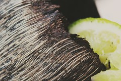 Put the lime in the coconut (© mpg) Tags: macro macromondays inspiredbyasong closeup coconut lime putthelimeinthecoconut