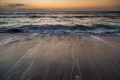 Sharky's Beach - Venice, FL - 24-105mm - Canon 5D Mark IV (abysal_guardian) Tags: sharkysbeachvenice fl24105mmcanon5dmarkivvenicefishingpierfloridadecember2016 canon eos 5dmarkiv 5dm4 5dmk4 5d mark iv 5d4 ef24105mmf4lisusm ef 24105mm f4l