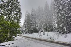 Once Upon A Winter's Day (jimgspokane) Tags: otw mtspokane washingtonstate