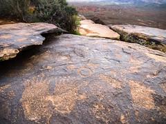 Seven Digits (xjblue) Tags: utah rockart petroglyph surface southernutah hike anasazi ridge landhill santaclarariverreserve
