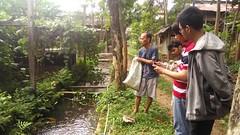 P_20160812_133302 (kasemarang) Tags: arsitektur komunitas semarang architecture community kambing ayam kandang village desa study field goat chicken