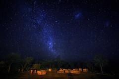 Milky Way (Mathijs Buijs) Tags: stars night sky milky way southern hemisphere long exposure etosha kunene national park south west africa trees canon eos 7d galaxy largemagellaniccloud cluster