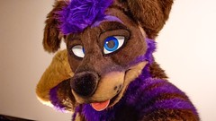 IMG_1324 (Kory / Leo Nardo) Tags: fur furry fursuit suiting dance party dj con convention further confusion fc san jose marriott center 2017 fc2017 pupleo leo kory
