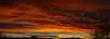 Sunrise 1 19 17 #33 Panorama e (Az Skies Photography) Tags: sun rise sunrise morning dawn daybreak sky skyline skyscape rio rico arizona az riorico rioricoaz arizonasky arizonaskyline arizonaskyscape arizonasunrise red orange yellow gold golden salmon black canon eos rebel t2i canoneosrebelt2i eosrebelt2i january 19 2017 january192017 11917 1192017 panorama