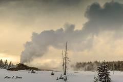 DSC_4642 copy (alj70) Tags: castlegeyer uppergeyserbasin yellowstonenationalpark snow steamphase winter