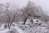 Court of the Patriarch - Zion National Park (CloudRipR) Tags: snow zionnationalpark courtofthepatriarchs rocks river stream virginriver utah nikon d810 nikkor white greatphotographers rockpaper