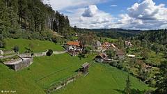 DSC06537-Predjama (dreptacz) Tags: sony lustrzanka slt widok las drzewa niebo chmury flickrtravelaward słowenia