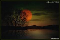 Tramonto con albero e riflesso - Gennaio-2017 (agostinodascoli) Tags: art digitalart texture nature landscape paesaggi tramonto sunset agostinodascoli sole alberi photoshop photopainting creative