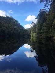 Exploring the Gordon River