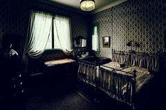 Visavuori (Tuomo Lindfors) Tags: museum suomi finland bed bedroom museo valkeakoski sculptor sksmki snky makuuhuone visavuori niksoftware emilwikstrm kuvanveistj analogefexpro