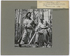 Coleman and Lulburrow (National Forests in Florida) Tags: boss sale coleman forester pulpwood lulburrow