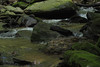 creek (Molly Des Jardin) Tags: park trees plants usa green water rock stone creek forest flow waterfall moss rocks state pennsylvania stones rocky running boulder boulders lancaster algae 2014 susquehannock drumore 43215mm