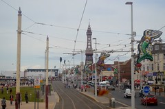 Blackpool Prom (PD3.) Tags: bus heritage beach buses square pier south north transport central tram lancashire trams blackpool pleasure talbot fleetwood psv pcv fylde