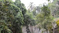 DSC_1343 (sootix) Tags: bali green temple ancient streams lush gunung pura kawi