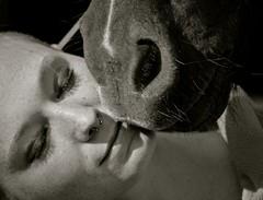 Wahre Liebe :) (SoniaShari) Tags: bw horse cheval pferd schwarzweis