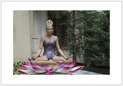 Venice Biennale 2015: European Cultural Centre (Pictures from the Ghost Garden) Tags: venice sculpture color colour art yoga nikon lotus installation dslr biennale venezia cannaregio 18105mm d7100 biennalearte